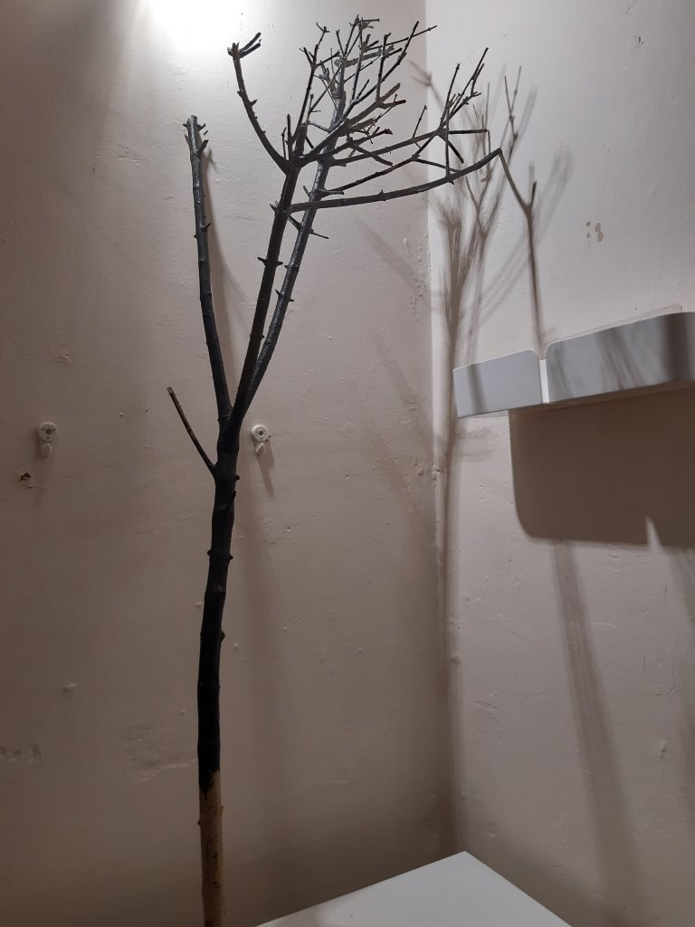 A painted branch - a stand for Bat Bites