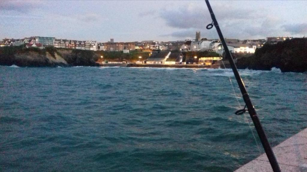 Fishing in Newquay harbour